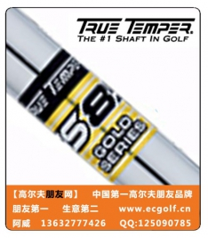 TRUE TEMPER GS85 GOLD SERIES S5 轻量 钢杆身