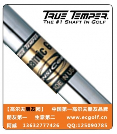 TRUE TEMPER DYNAMIC GOLD SENSICORE 钢杆身